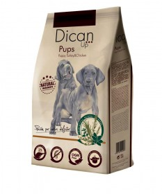 DICAN UP PUPS 4 KG
